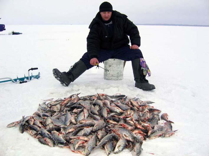 прогноз на рыбалку на сегодня в астане