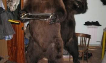 "медведь ""Официант"""