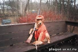 """Собака на охоте """"подстрелила"""" хозяина"""