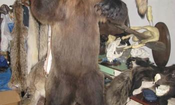 медведь на подставке