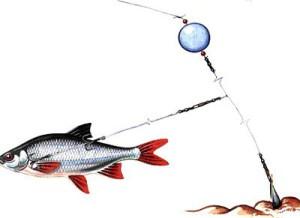 русская рыбалка 2010 скачать торрент