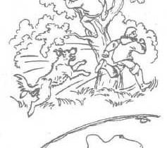 На дерево загнал