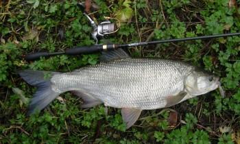 Ультралайт спиннинг St. Croix для ловли на малых реках