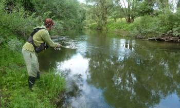 Ловля спиннингом с берега на малой речке