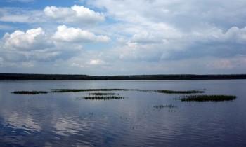 Палецкое озеро