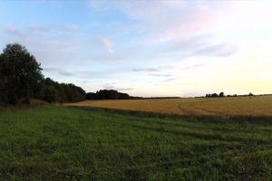 поля в калужской области