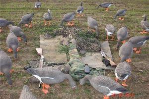 открытие весенней охоты в саратовской области