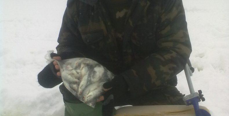 Белохолуницкий пруд 24 декабря 2013