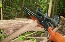 Выбор пневматики для охоты