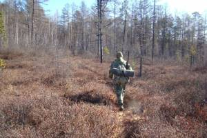 охотник на болоте