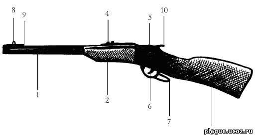 Устройство ружья