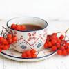 Чай из ягод рябины