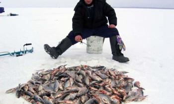Отчеты о рыбалке