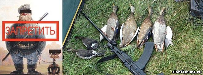 Весеннюю охоту в России могут отменить