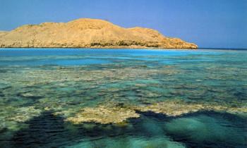 Красное море, Египет.