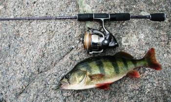 Ультралайт спиннинг для ловли на малых реках