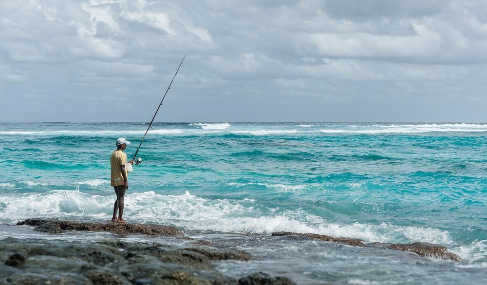 экзотическая рыбалка на берегу залива
