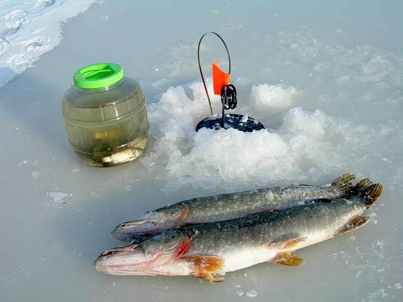 Рыбалка зимняя ловли щуки