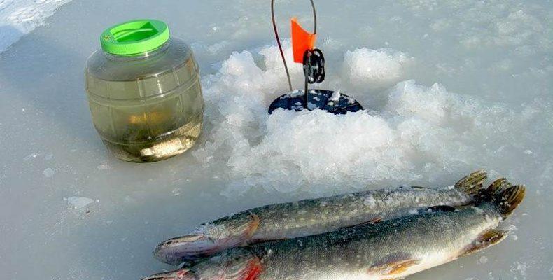Ловля щуки зимой со льда на жерлицы