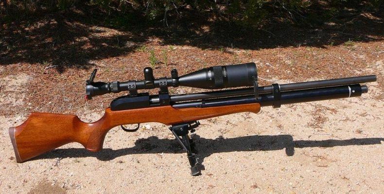 Винтовки РСР – особенности оружия, сравнение популярных моделей