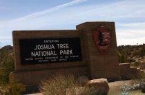 Парк Джошуа-Три — экологический заповедник в пустыне