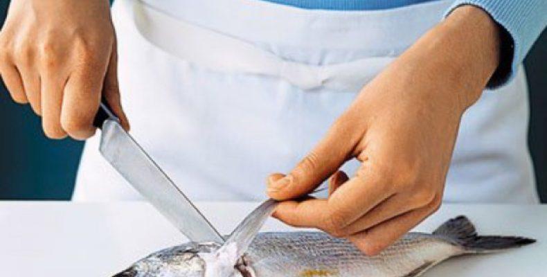 Как выбрать нож для рыбы