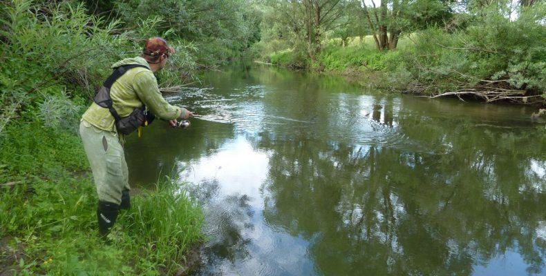 Ловля спиннингом на малых реках