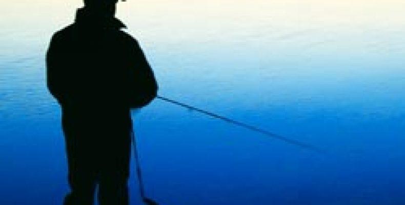 Ловись, рыбка, бесплатно